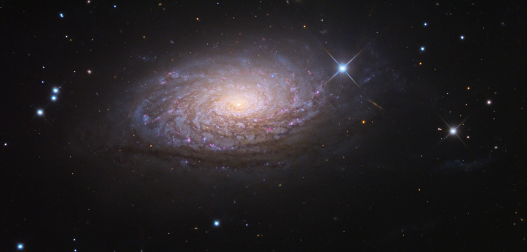 sunflower galaxy,m63