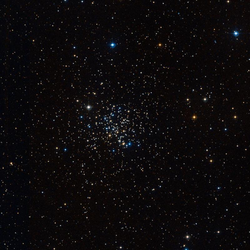 king cobra cluster,m67,ngc 2682