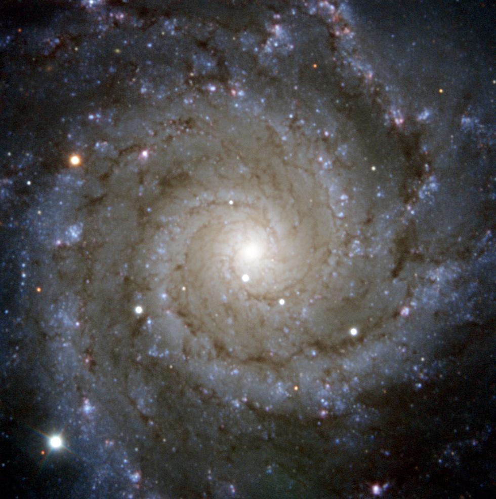 m74 supernova