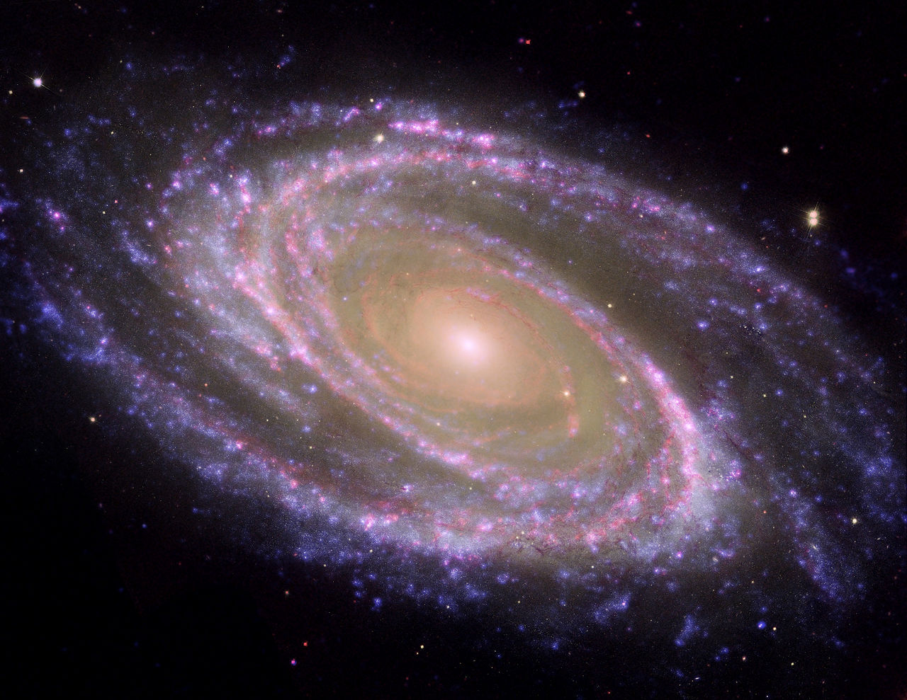 bode's galaxy,messier 81,ngc 3031